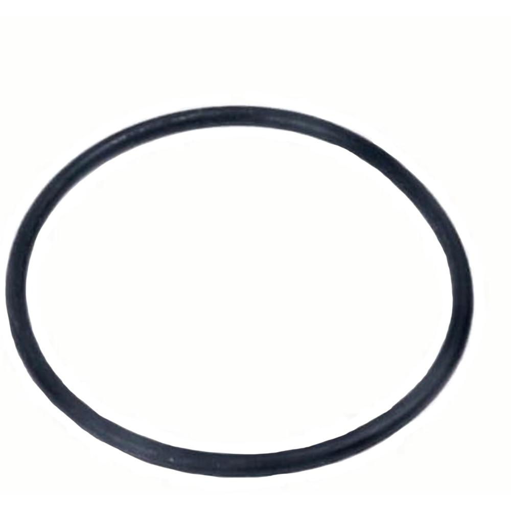 Jain Replacement O-Ring for Spin Clean Filter