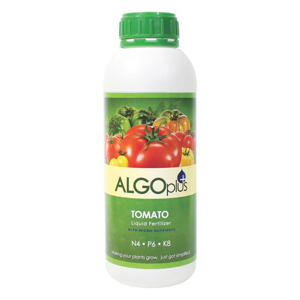 AlgoPlus Tomato