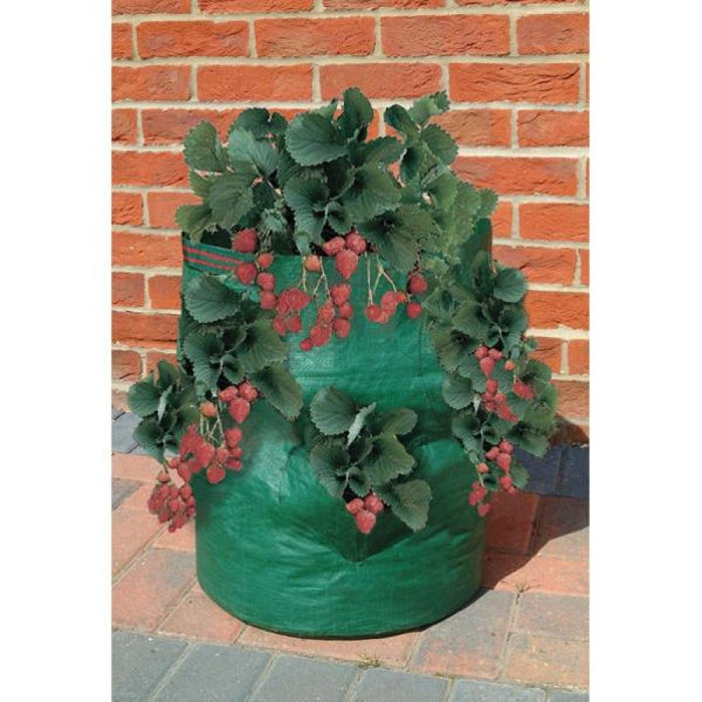 Bosmere Strawberry / Herb Planter Bag