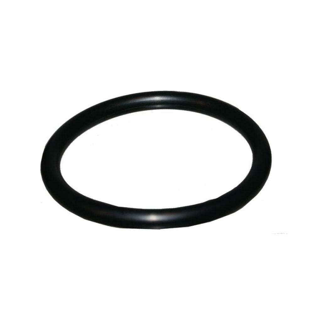 "EZ-Flo Low Pressure Replacement Cap \""O\"" Ring"