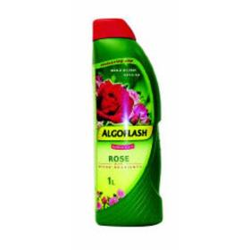 Algoflash Rose