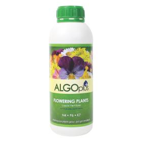 ALGOplus Flowering Plant