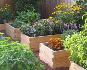 "Drip Depot Natural Yards Raised Bed Kit ""A\"""