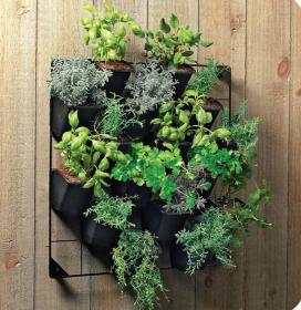 Vertical Wall Garden Rack