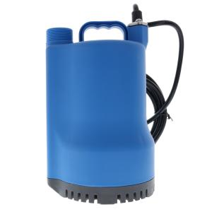 Munro Pond-Residential Submersible Pump