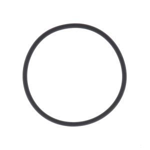Amiad Tagline Filter Housing O-Ring