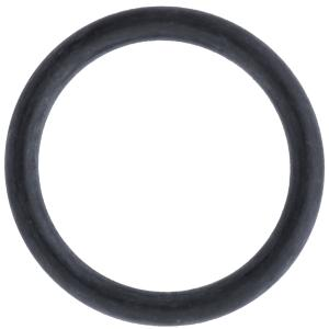 MixRite TF5 Cylinder Support O-Ring