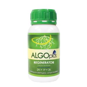 AlgoPlus Regenerator