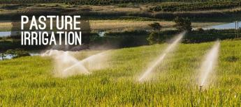shop Pasture Irrigation