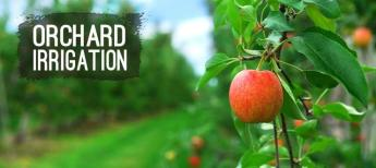 shop Orchard Irrigation