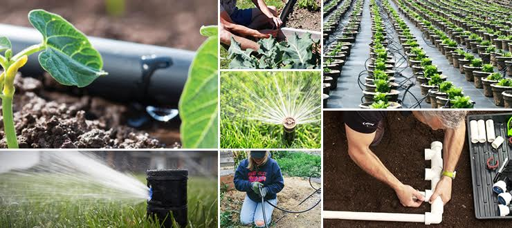 Irrigation Supplies And Equipment From Dripdepot